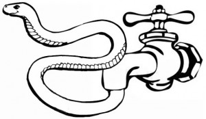 snakefaucet